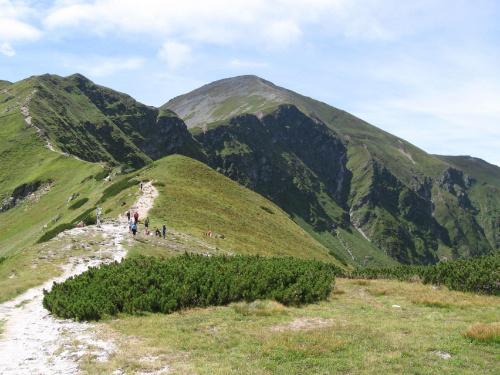 Siwa Przełęcz #Góry #Tatry #StarorobociańskiWierch