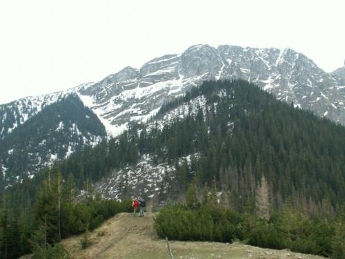 Zakopane, maj 2008 #Góry