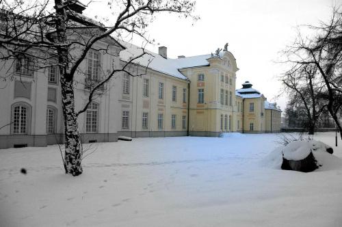 #zima #śnieg #drzewo