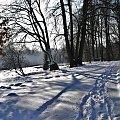 #park #zima #cień #śnieg