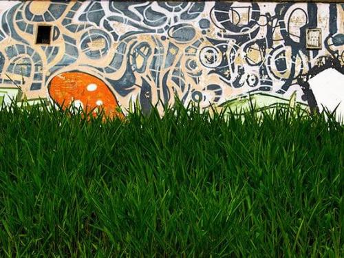 #trawa #graffiti #miasto #Rzeszów