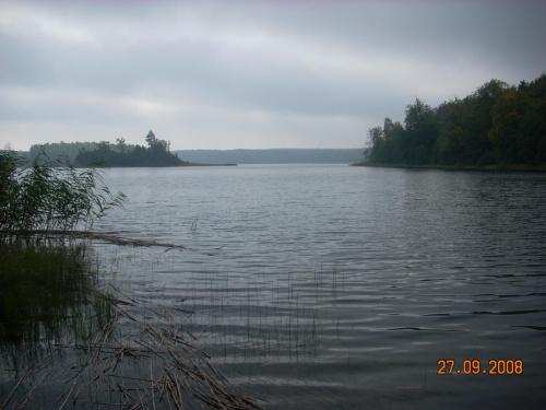 Jezioro Kozi�skie od strony Mikorowa.