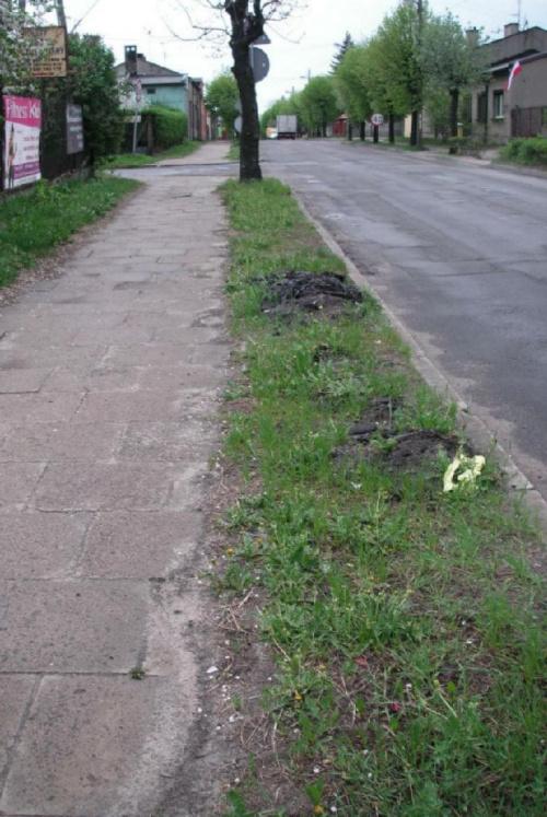 http://images37.fotosik.pl/1503/834a415a52ef520emed.jpg