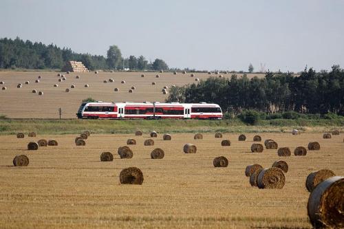 Szynobus SA 132, trasa Poznań - Wolsztyn, okolice Szreniawy, 08.08.2009 #SzynobusSA132 #Eisenbahn #kolej #kolejnictwo #lokomotywa #lokomotywy #PKP #pociąg #PojazdySzynowe #Szreniawa #Train #vlak #Zug