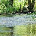 bystrze jakubkowo #wel #rzeka #kajaki #spływ #bystrze