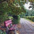 #jesień #ławka