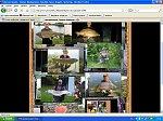 images37.fotosik.pl/216/4e6f96c73f271905m.jpg