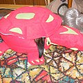 #żółw #fretka #żółwik #zabawka #hamak #domek
