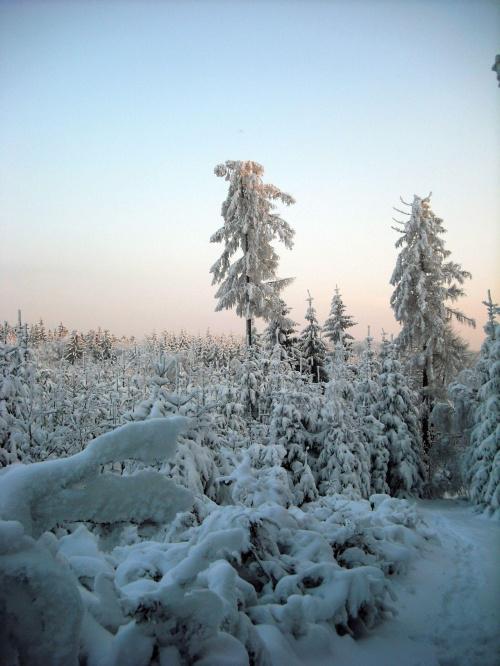 Wilcza Góra 20.12.2009