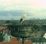 http://images37.fotosik.pl/238/4de1f5d9509feb4fm.jpg