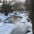 Lesk w Jaczkowie #Rzeki #krajobrazy #przyroda