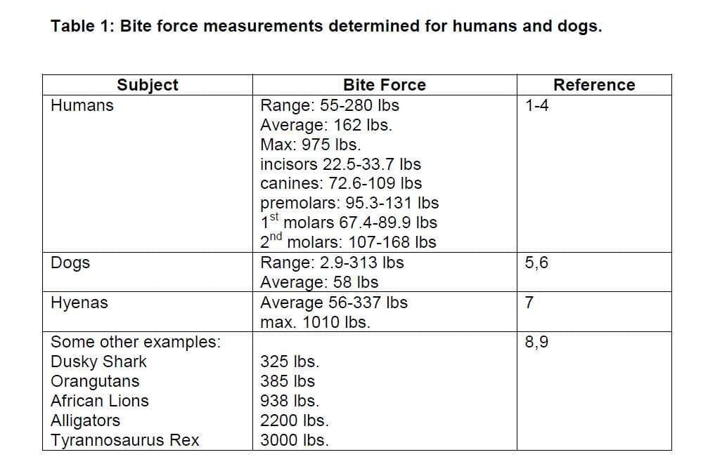 Bite force in Animal vs Animal Forum