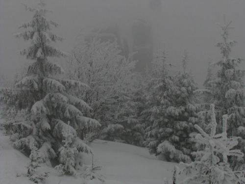 Żółtym szlakiem ze schroniska Pod Łabskim Sczytem_Kukułcze Skały #Karkonosze #góry #zima #śnieg #las #KukułczeSkały