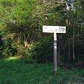 Puszcza Kampinoska-ukryte i znalezione w lesie #PuszczaKampinoska #błoto #UroczyskoKalisko