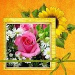 http://images37.fotosik.pl/331/b02c2810e3b33213m.jpg