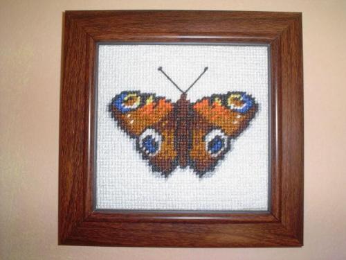 Motyl 4. #hafty