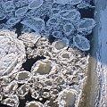 Kra na Warcie #zima #rzeka #kra #biel