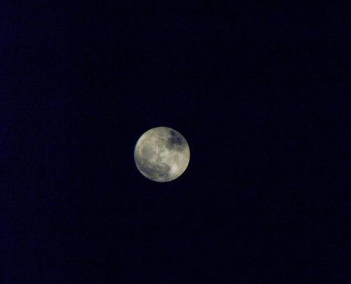 Pół godziny po perygeum. #księżyc #pełnia #perygeum #Radom #FujifilmS1000fd