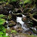 Wody Bilej Opavy płynęła tego dnia żwawiej niż zwykle :) #Czechy #góry #Jeseniki