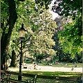 """""""Zielono mi"""" Park Narodowy, Wiedeń, Czerwiec 2011 #deszcz #drzewa #jezioro #kadr #makro #morze #przyroda"""